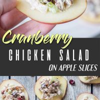 Cranberry chicken salad on apple slices pinterest pin