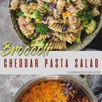 Broccoli pasta salad with cranberries pin