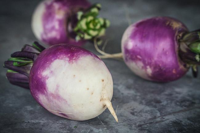 Turnips on a dark background