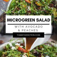 Microgreen salad pinterest pin