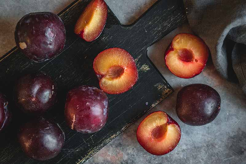 Halved plums on the table